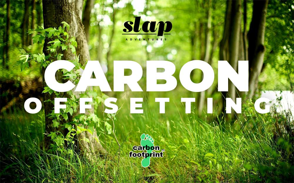Carbon Footprint - Carbon Offsetting